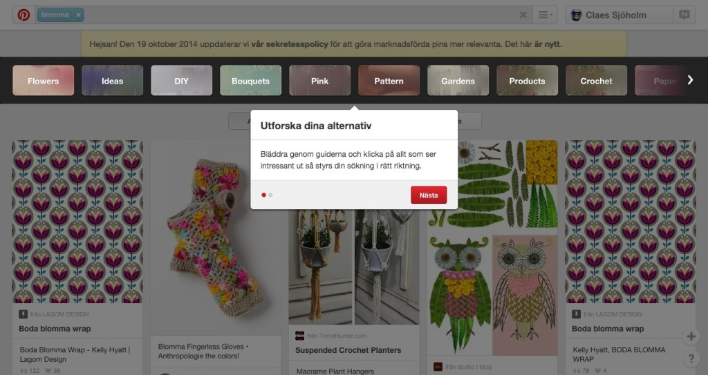 Pinterest-Guided Search